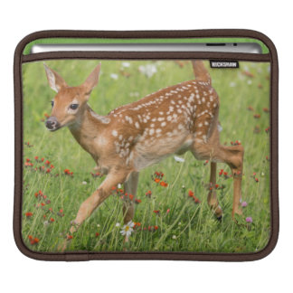 USA, Minnesota, Sandstone, Minnesota Wildlife 20 iPad Sleeve