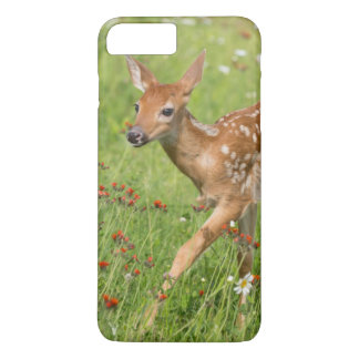 USA, Minnesota, Sandstone, Minnesota Wildlife 20 iPhone 8 Plus/7 Plus Case