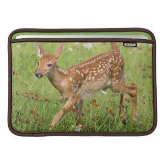 USA, Minnesota, Sandstone, Minnesota Wildlife 20 Sleeve For MacBook Air