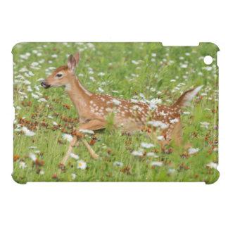 USA, Minnesota, Sandstone, Minnesota Wildlife 21 iPad Mini Cover