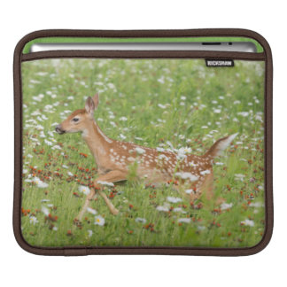 USA, Minnesota, Sandstone, Minnesota Wildlife 21 iPad Sleeve
