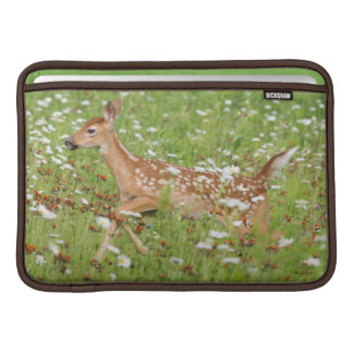 USA, Minnesota, Sandstone, Minnesota Wildlife 21 Sleeve For MacBook Air