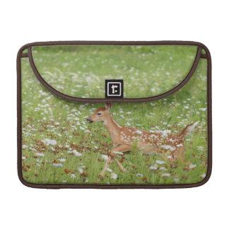 USA, Minnesota, Sandstone, Minnesota Wildlife 21 Sleeve For MacBook Pro