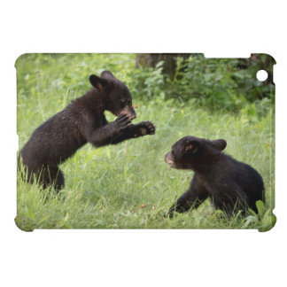 USA, Minnesota, Sandstone, Minnesota Wildlife 22 Case For The iPad Mini
