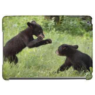 USA, Minnesota, Sandstone, Minnesota Wildlife 22 Cover For iPad Air