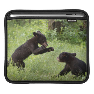USA, Minnesota, Sandstone, Minnesota Wildlife 22 iPad Sleeve