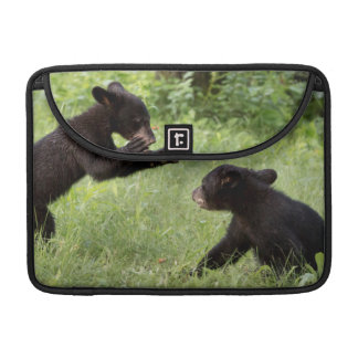 USA, Minnesota, Sandstone, Minnesota Wildlife 22 Sleeve For MacBook Pro