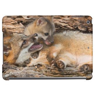 USA, Minnesota, Sandstone, Minnesota Wildlife 23 iPad Air Case