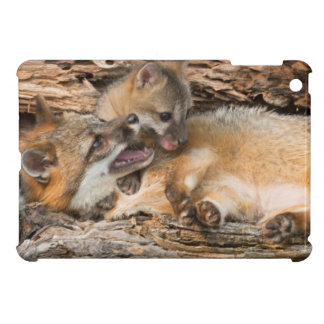 USA, Minnesota, Sandstone, Minnesota Wildlife 23 iPad Mini Cases