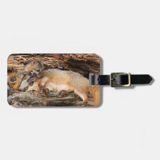 USA, Minnesota, Sandstone, Minnesota Wildlife 23 Luggage Tag