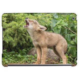 USA, Minnesota, Sandstone, Minnesota Wildlife 2 iPad Air Case