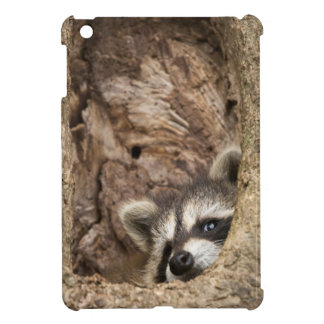 USA, Minnesota, Sandstone, Minnesota Wildlife 3 Case For The iPad Mini