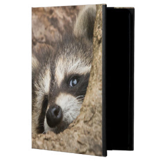 USA, Minnesota, Sandstone, Minnesota Wildlife 3 Cover For iPad Air