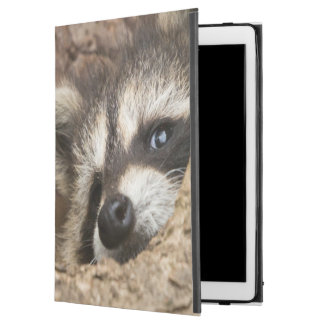 "USA, Minnesota, Sandstone, Minnesota Wildlife 3 iPad Pro 12.9"" Case"