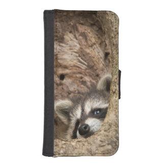 USA, Minnesota, Sandstone, Minnesota Wildlife 3 iPhone SE/5/5s Wallet Case