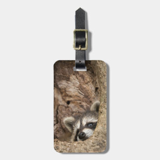 USA, Minnesota, Sandstone, Minnesota Wildlife 3 Luggage Tag