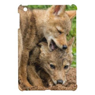 USA, Minnesota, Sandstone, Minnesota Wildlife 4 iPad Mini Case