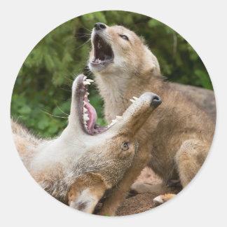 USA, Minnesota, Sandstone, Minnesota Wildlife 6 Classic Round Sticker