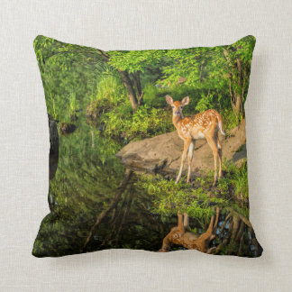 USA, Minnesota, Sandstone, Minnesota Wildlife 6 Cushion