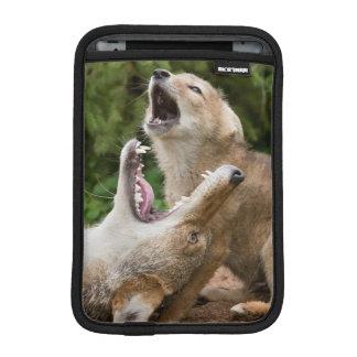 USA, Minnesota, Sandstone, Minnesota Wildlife 6 iPad Mini Sleeve