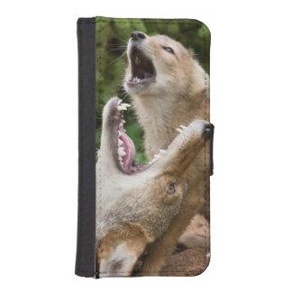 USA, Minnesota, Sandstone, Minnesota Wildlife 6 iPhone SE/5/5s Wallet Case