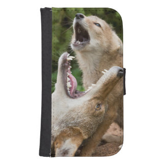 USA, Minnesota, Sandstone, Minnesota Wildlife 6 Samsung S4 Wallet Case
