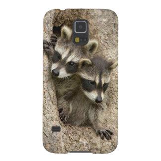 USA, Minnesota, Sandstone, Minnesota Wildlife 7 Galaxy S5 Case