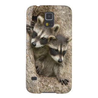USA, Minnesota, Sandstone, Minnesota Wildlife 7 Galaxy S5 Cover