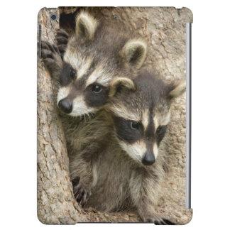 USA, Minnesota, Sandstone, Minnesota Wildlife 7 iPad Air Case