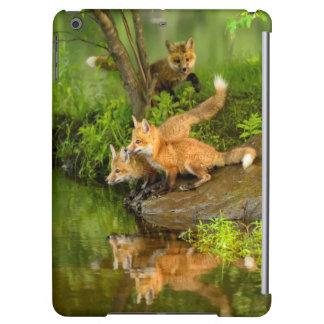 USA, Minnesota, Sandstone, Minnesota Wildlife 7 iPad Air Cover