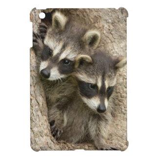 USA, Minnesota, Sandstone, Minnesota Wildlife 7 iPad Mini Cover