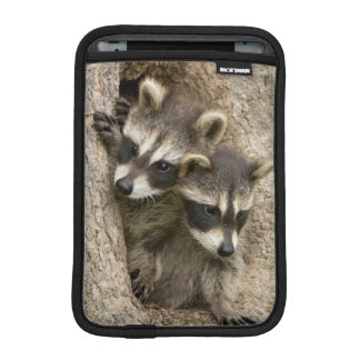 USA, Minnesota, Sandstone, Minnesota Wildlife 7 iPad Mini Sleeve