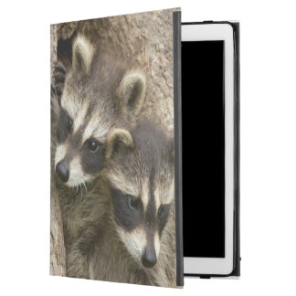 "USA, Minnesota, Sandstone, Minnesota Wildlife 7 iPad Pro 12.9"" Case"
