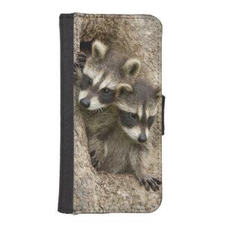 USA, Minnesota, Sandstone, Minnesota Wildlife 7 iPhone SE/5/5s Wallet Case