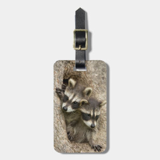 USA, Minnesota, Sandstone, Minnesota Wildlife 7 Luggage Tag