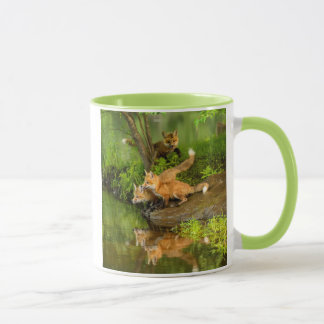 USA, Minnesota, Sandstone, Minnesota Wildlife 7 Mug