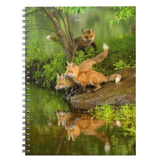 USA, Minnesota, Sandstone, Minnesota Wildlife 7 Notebooks