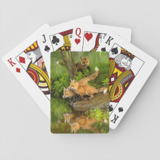 USA, Minnesota, Sandstone, Minnesota Wildlife 7 Playing Cards