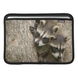USA, Minnesota, Sandstone, Minnesota Wildlife 7 Sleeve For MacBook Air