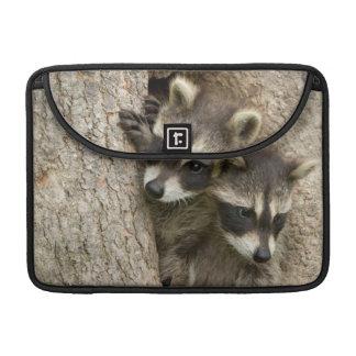 USA, Minnesota, Sandstone, Minnesota Wildlife 7 Sleeve For MacBooks