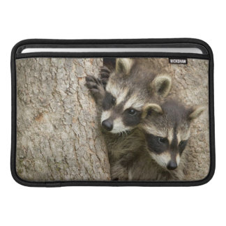 USA, Minnesota, Sandstone, Minnesota Wildlife 7 Sleeves For MacBook Air