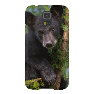 USA, Minnesota, Sandstone, Minnesota Wildlife 8 Galaxy S5 Covers