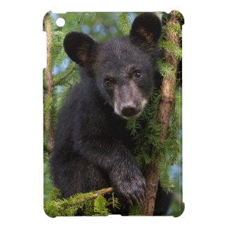 USA, Minnesota, Sandstone, Minnesota Wildlife 8 iPad Mini Case