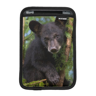 USA, Minnesota, Sandstone, Minnesota Wildlife 8 iPad Mini Sleeve
