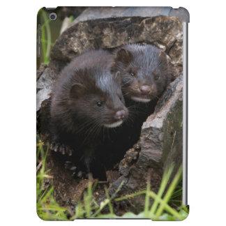 USA, Minnesota, Sandstone, Minnesota Wildlife iPad Air Cover