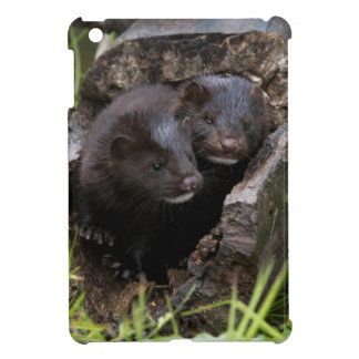 USA, Minnesota, Sandstone, Minnesota Wildlife iPad Mini Cases