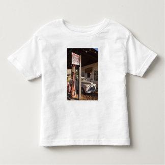 USA, Mississippi, Jackson. Mississippi 2 Toddler T-Shirt
