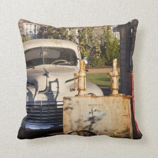 USA, Mississippi, Jackson. Mississippi Cushion