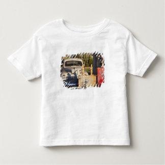USA, Mississippi, Jackson. Mississippi Toddler T-Shirt