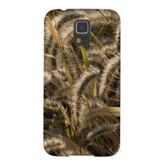 USA, Missouri, Foxtail (Diaspore) Galaxy S5 Cover